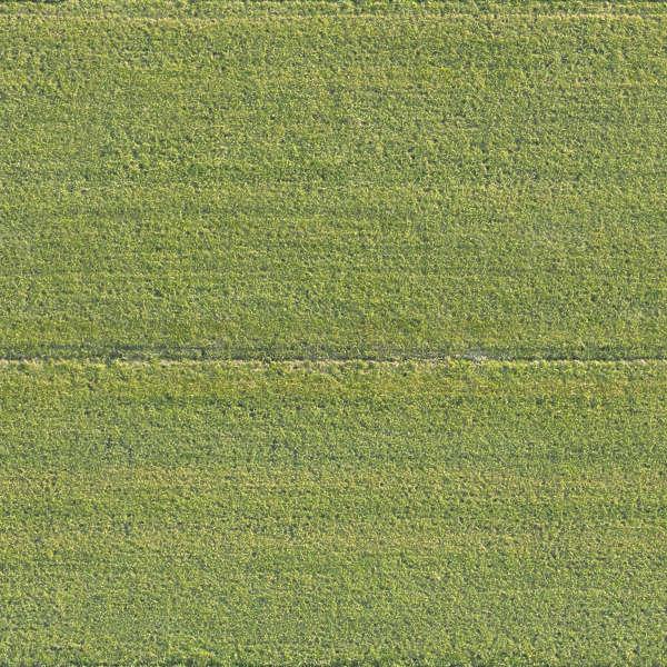 Grass0197 Free Background Texture Aerial Field Grass