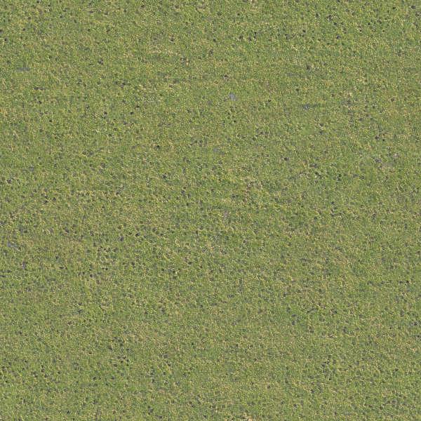 grass0202 - free background texture