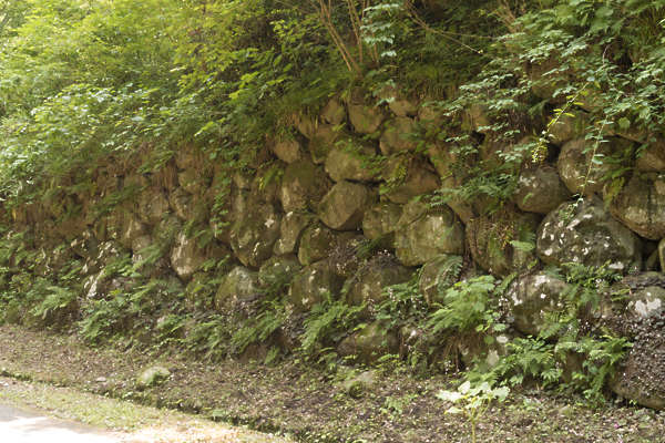 brick bricks medieval old castle wall Japan Japanese moss mossy plants fern ferns jungle boulders
