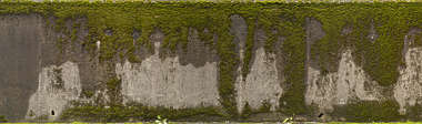 moss mossy wall japan alpha masked alphamasked decal
