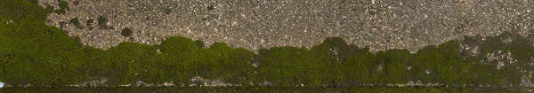 moss mossy wall japan edge alpha masked alphamasked decal