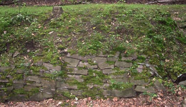 brick medieval wall stones old plants mossy moss
