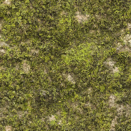 Moss0177 Free Background Texture Moss Mossy Green