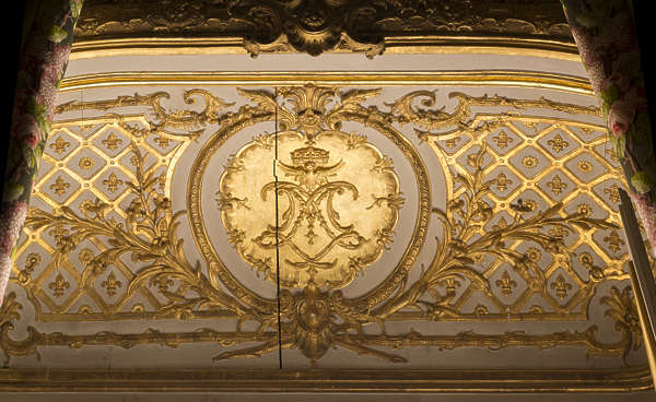 ornate ornament gold gilded ceiling