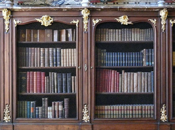 bookcase books old ornate