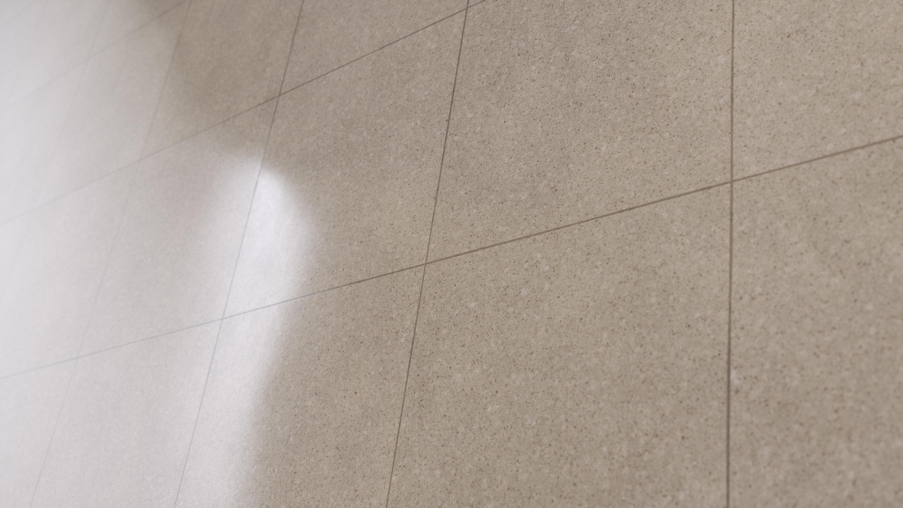 Epoxy Terrazzo Flooring Pbr0489