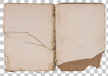 paper book open pages old weathered damaged