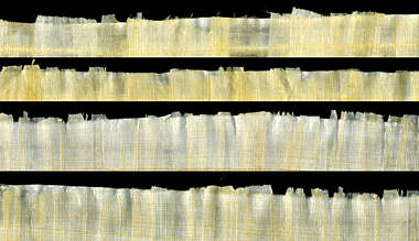 papyrus paper reed old edges torn frail edge