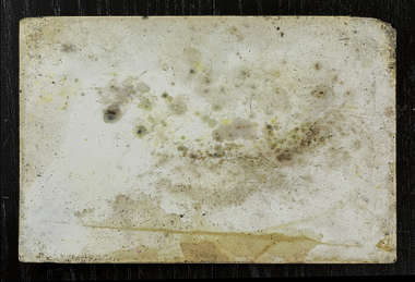 moldy mouldy paper old