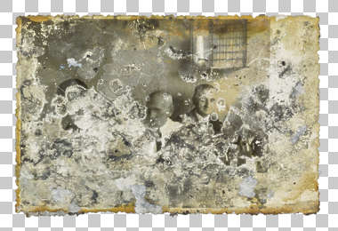moldy mouldy photograph paper old