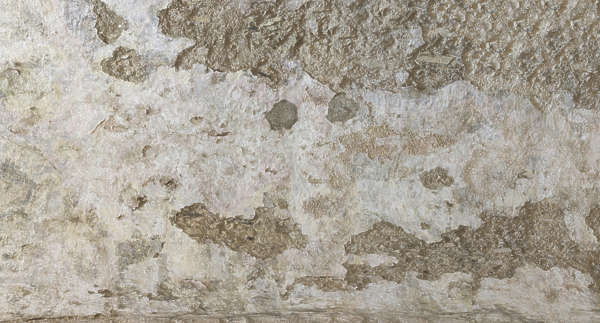 plaster ceiling medieval old monastery damaged