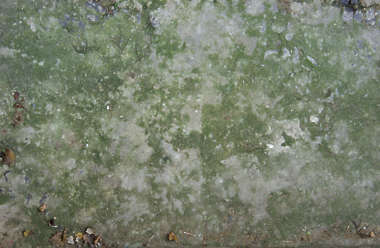 concrete paint dirty mossy