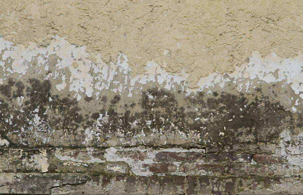 plaster dirty old worn gradient