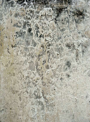plaster dirty wall