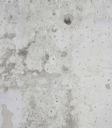 gypsum plaster daub bare dirty