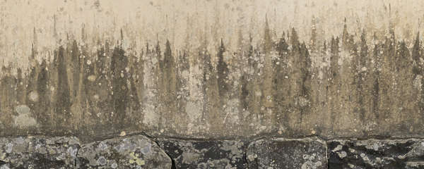 plaster loam old wall medieval clay japan gradient grunge grungemap leaking