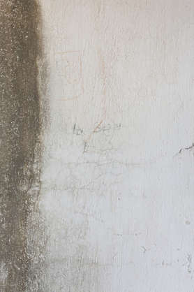 stain wall plaster
