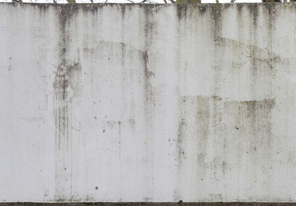 plaster leaking dirty