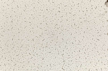 ceiling plate plates office grunge grungemap speckles