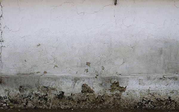 concrete wall plaster