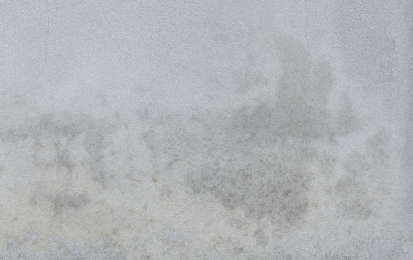 Plasterwhitedirty0161 Free Background Texture Plaster