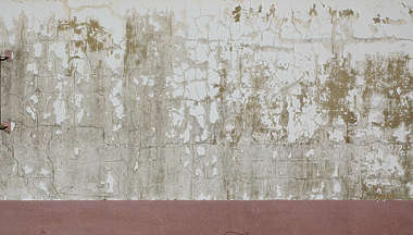 plaster wall paint