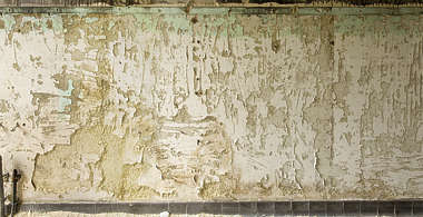 plaster damaged white bare