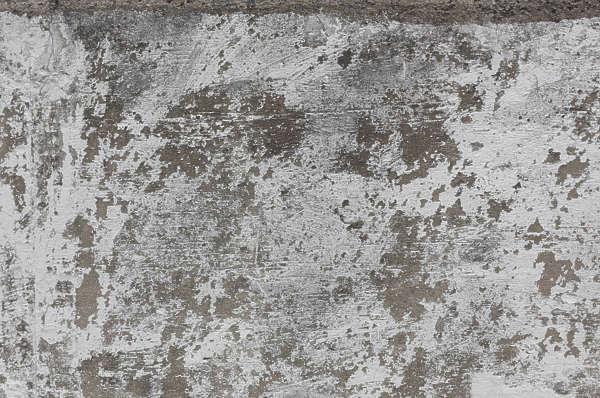 Plasterwhiteworn0108 Free Background Texture Plaster