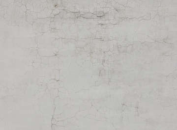 plaster white paint cracks cracked