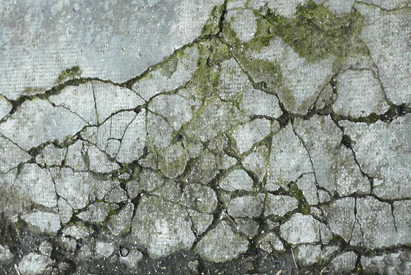 concrete cracked floor