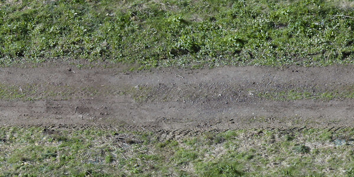Roadsdirt0004 Free Background Texture Road Grass Track