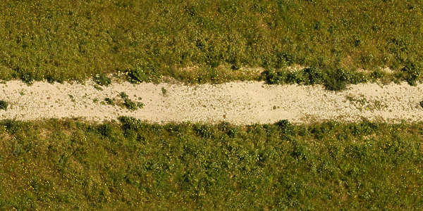 path sand grass footpath dirt road