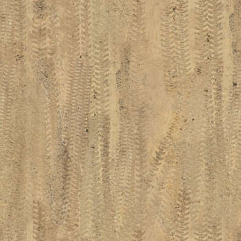 dirt texture seamless. Dirt Roads. Show Seamless Textures Only. 81 Of Photosets Texture S