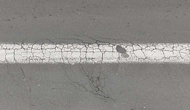 asphalt like cracked cracks