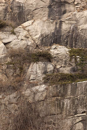 south korea rock stone cliff grass clumps