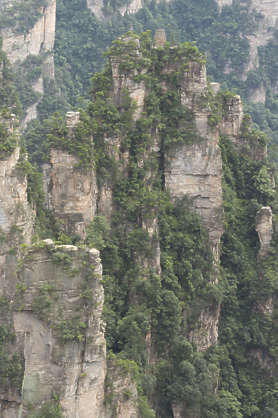 china rock rocks cliff cliffs Zhangjiajie formation jungle overgrown grassy