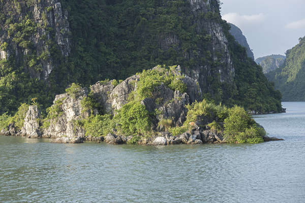 rock mountain landscape ha long vietnam asia asian grassy