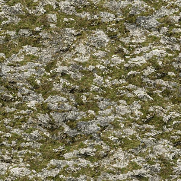 Grey Wood Texture Seamless