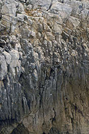rock cliff sea