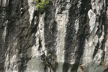 rock cliff ha long vietnam asia asian grassy
