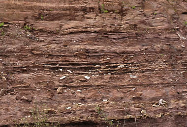 rock layers geological earth