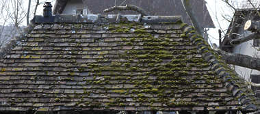 roof rooftiles slate shingles stone ceramic old moss