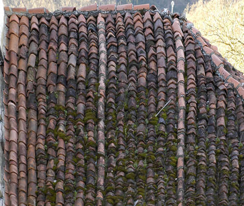 tiles rooftiles roof roofing ceramic old moss