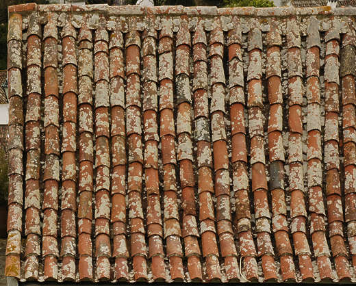 rooftiles roofing ceramic old roof