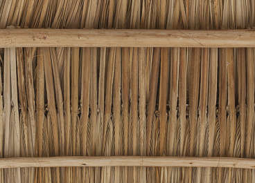 feathers dry wicker bamboo ceiling roof roofing