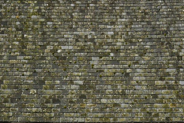 rooftilesslate0053 - free background texture