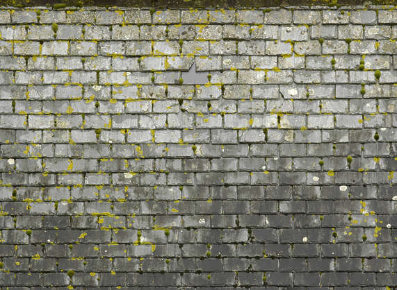 rooftilesslate0056 - free background texture