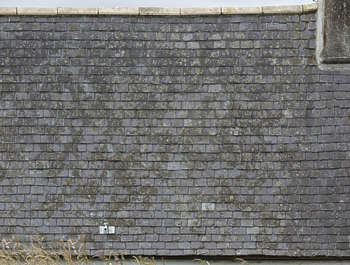 roofing tiles slates mossy UK