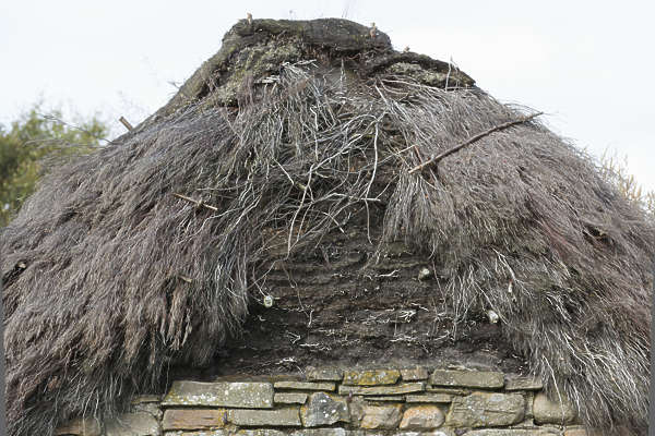 UK roofing straw thatched old hut