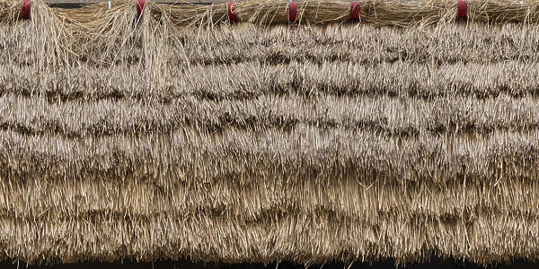 Thatched0069 Free Background Texture Thatched Thatch